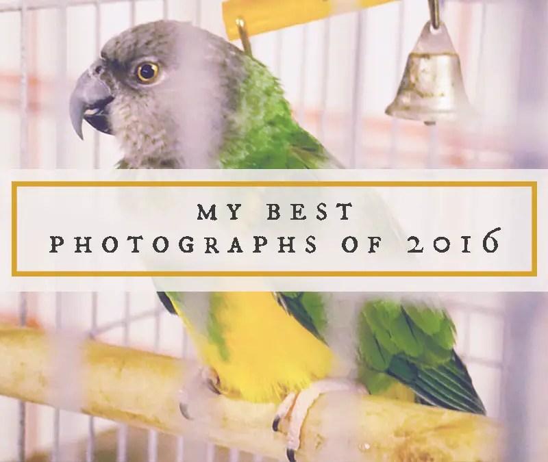 My Best Photographs of 2016