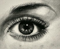 A Black and White Observation Drawing