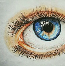 An Eye Observation Doodle