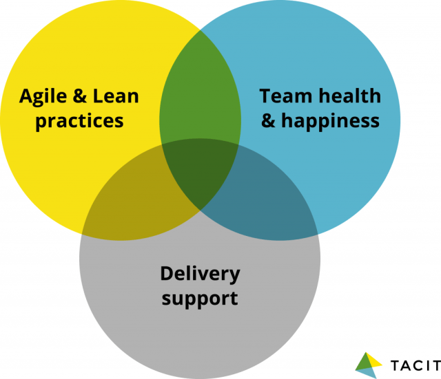 Aspects of the delivery manager role: Agile and lean practices; team health and happiness, and delivery support
