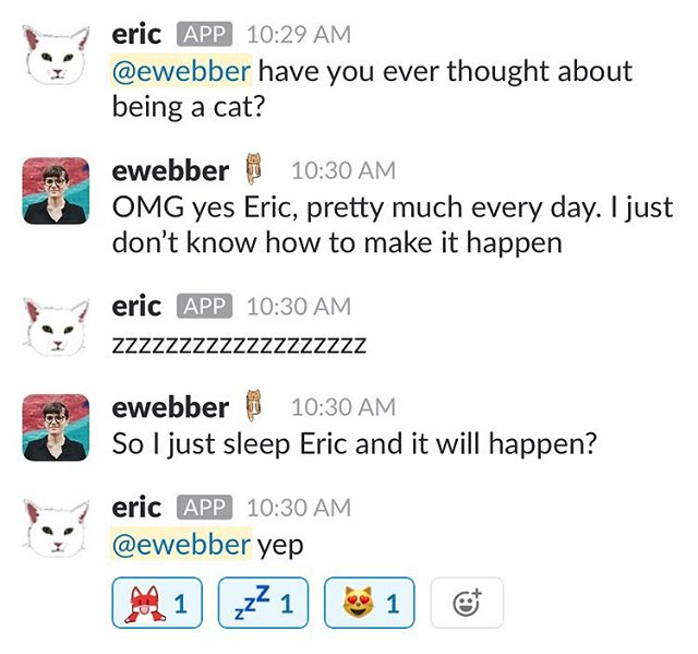 A conversation with the eric bot