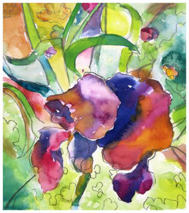 """watercolor, pencil on paper   13.5"""" x 12""""   $210"""