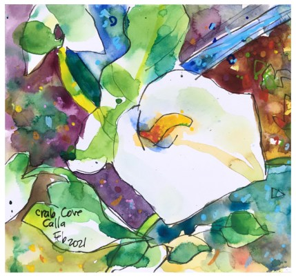 """watercolor, pen, acrylic ink on paper   7"""" x 8""""   $75"""