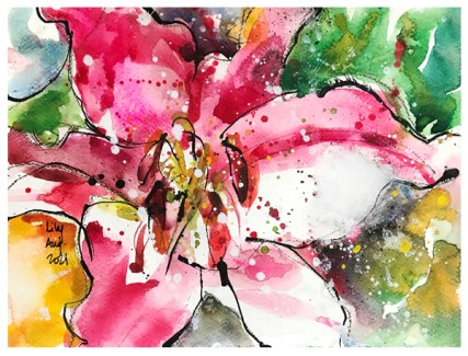 watercolor and ink drawing of lily by emily weil
