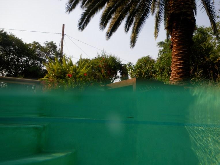 Backyard pool, Redlands, CA, 2013