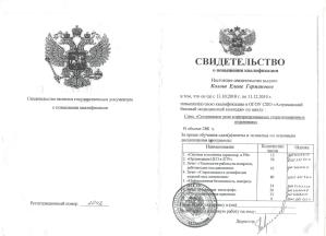 Свидетельство, Колош Елена Германовна