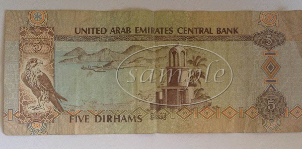 UAE 5 dirham note back
