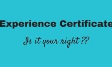 experience certificate dubai uae
