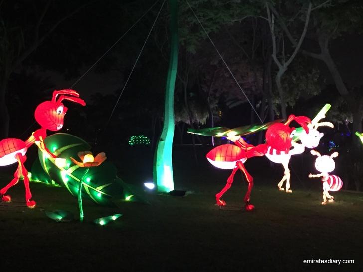 dubai-garden-glow-pictures-images-2015-emirates-diary-082