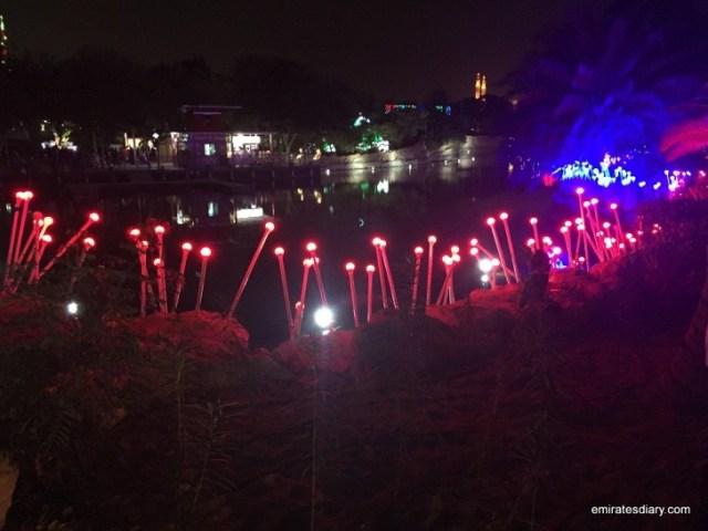 dubai-garden-glow-pictures-images-2015-emirates-diary-117