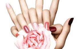 Beauty Q&A | Trends, Dewy Skin & Hand Creams