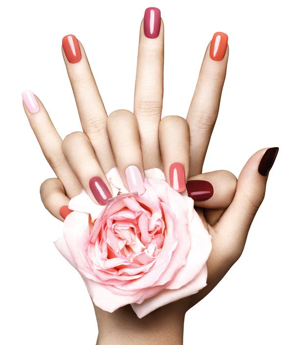 Trends, Dewy Skin & Hand Creams – Emirates Woman