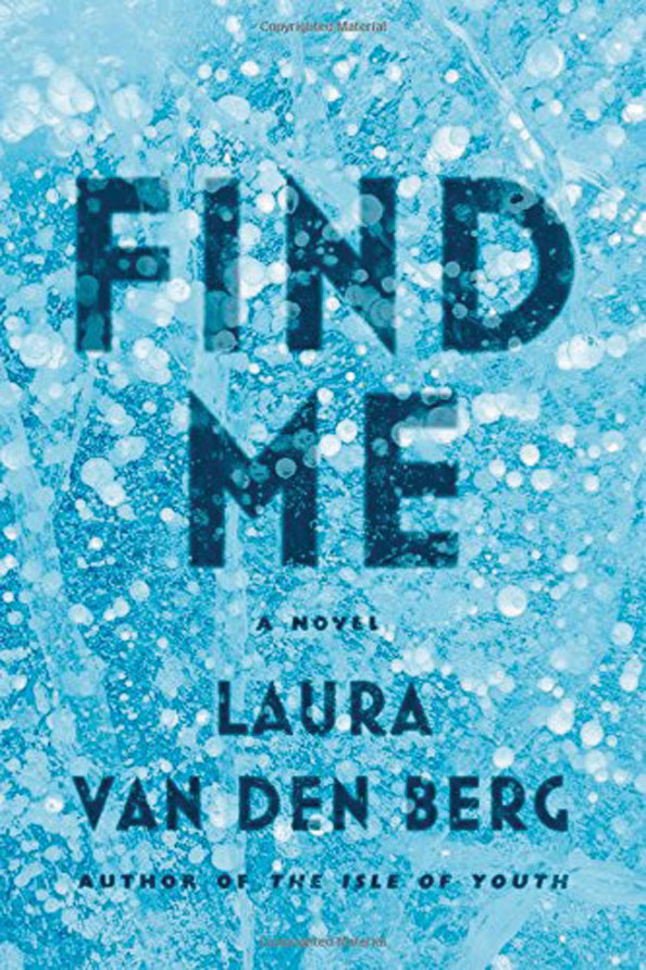 Holiday reading, Laura van den Berg