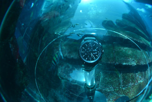 TagHeuer_AtlantisAquarium_selection062