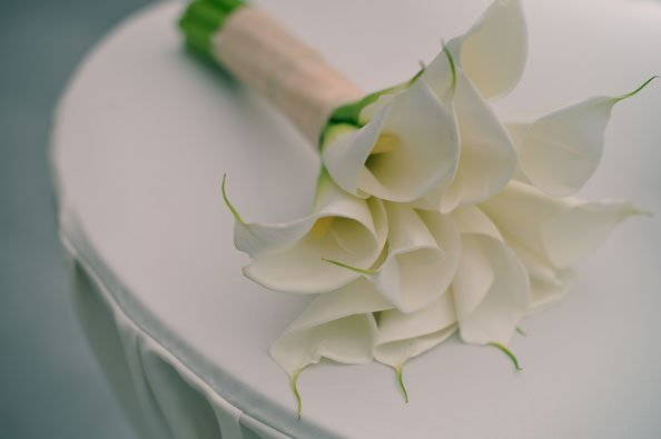 flowers, bouquet, 10 Popular Flowers Perfect For A Desert Wedding