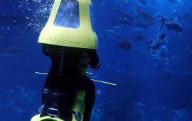Are You Brave Enough To Swim With Sharks On An Underwater Scooter?