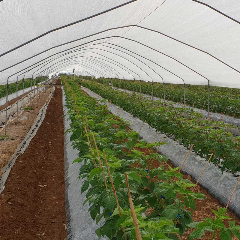 gamme agriculture emis france
