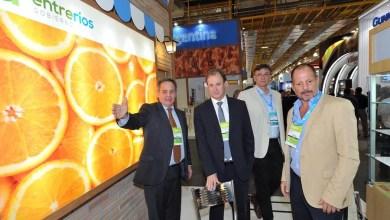 Photo of Primera exportación de naranjas entrerrianas a Brasil