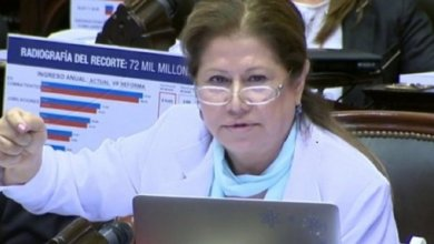 Photo of Graciela Camaño: «La gente se dio cuenta que les estaban robando»