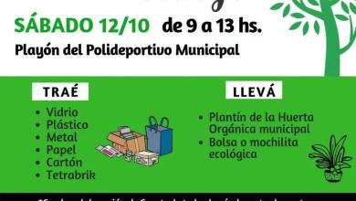 Photo of 12 de octubre: Eco Canje en Oro Verde