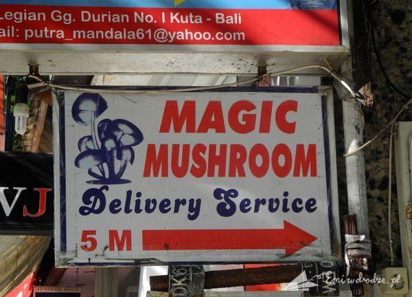 magic_mashroom_Bali