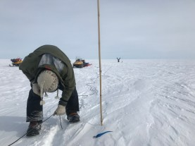 Matt pulling up a buried electrode wire while we downloaded the data from the logger. In the background, Meghan gets some yoga on while awaiting us to give her the okay to pull the electrodes out.