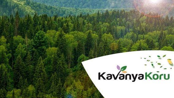 Kavanya Koru