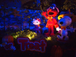 Halloween even makes Elmo look a little less friendly than usual.. or maybe it was just the lighting?