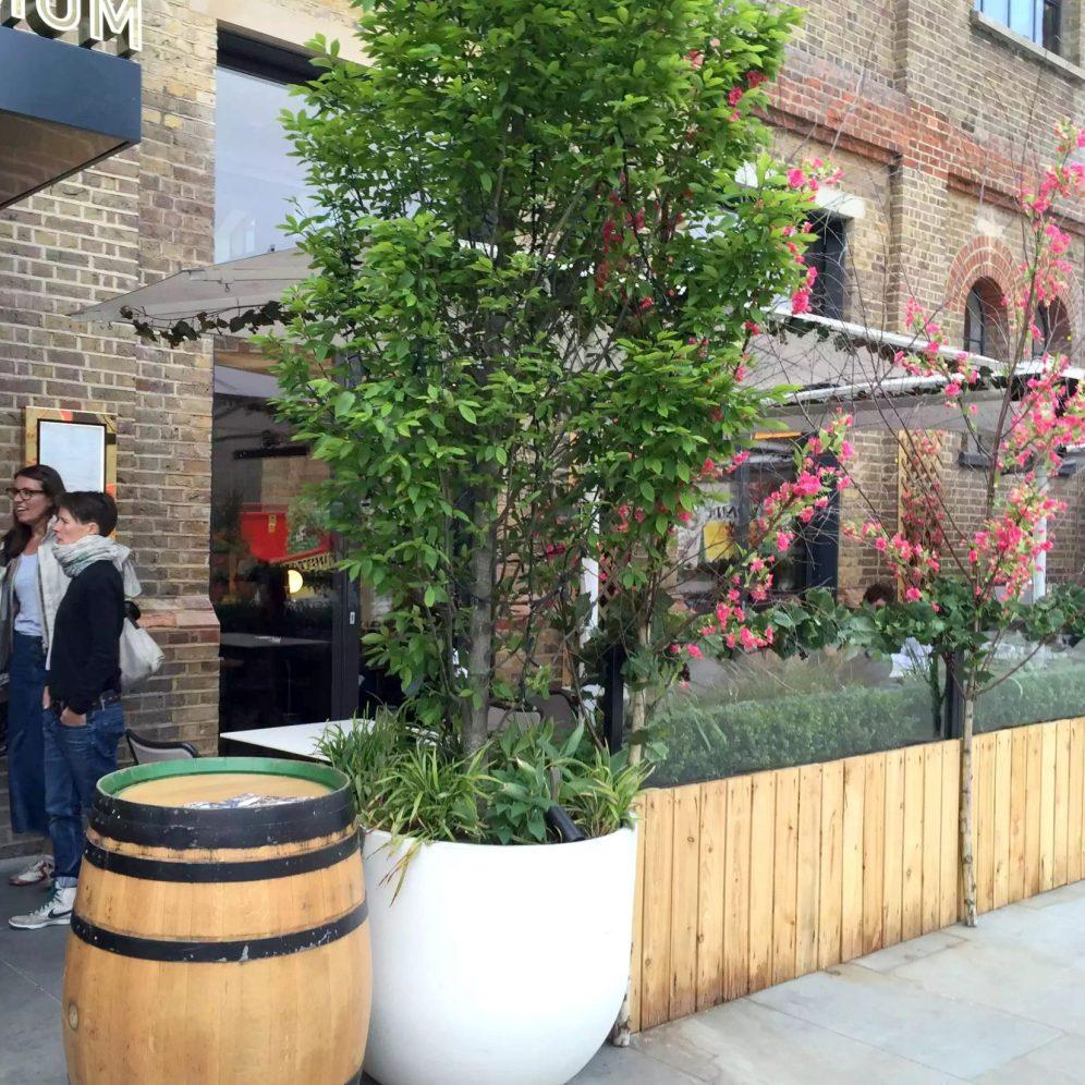 German Gymnasium D&D Kings Cross London Birthday Dinner Restaurant Terrace