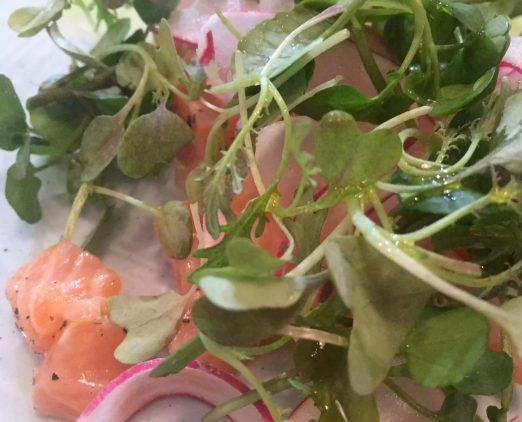Lure Fish Kitchen North London Kentish Town Seafood Restaurant Salmon Tartare