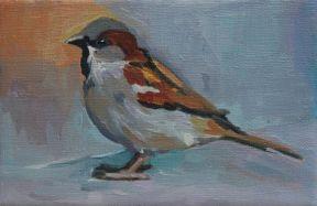 Sparrow # 2