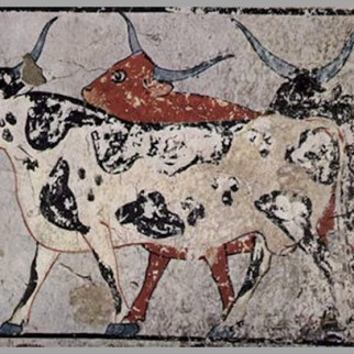 CATTLE THE MOST USEFUL ANIMAL OF ANCIENT EGYPT (1)
