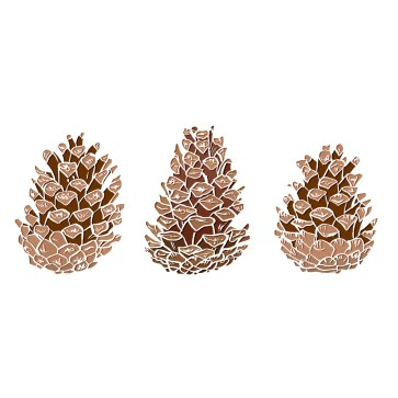 pine-cones-ai