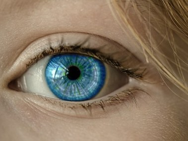 Iris: Seeing Story