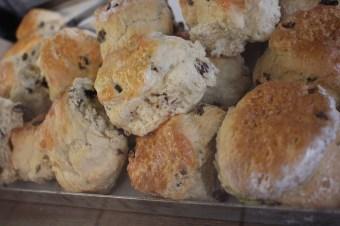 Fitzbillies scones