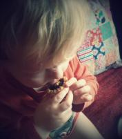 Quality Assurance on the mince pies