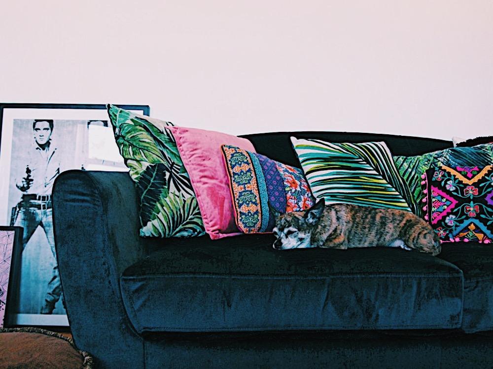 Emma-Jane-Palin-Living-Room-Velvet-sofa