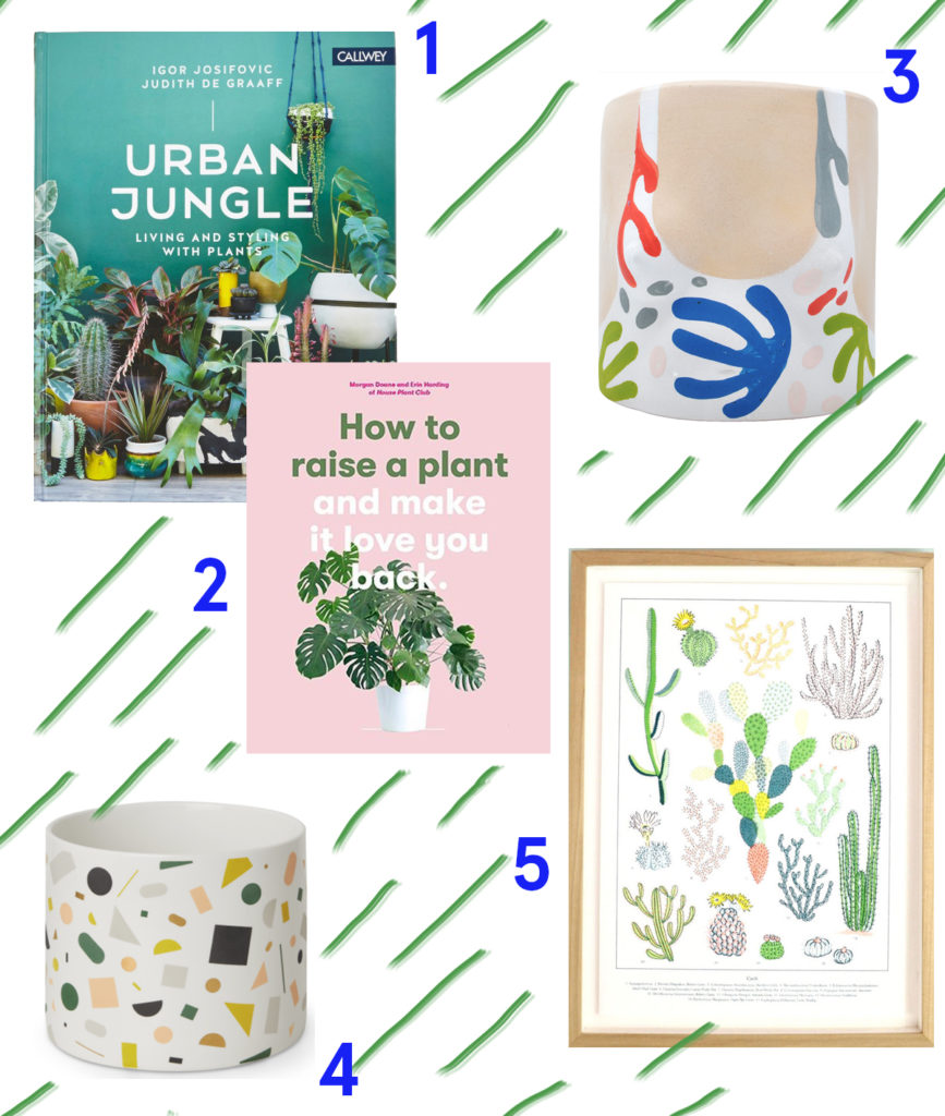 Colourful Gifts for the plant addict