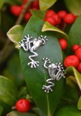Frogs-Mini-2---Emma-Keating-Jewellery