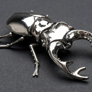 Stag Beetle - Emma Keating Jewellery
