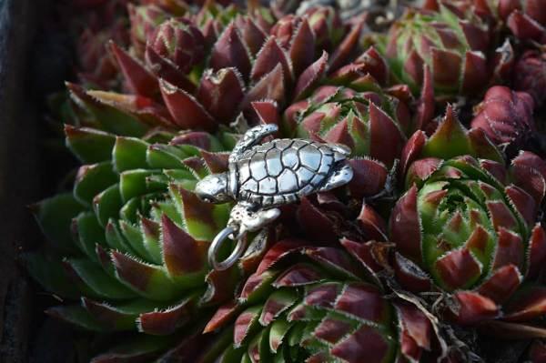 Turtle-Charm-2---Emma-Keating-Jewellery