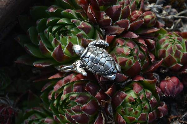 Turtle-Charm-3---Emma-Keating-Jewellery