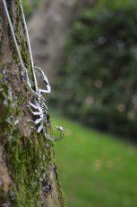 Sheerness Scorpion 10 - Emma Keating Jewellery__sm