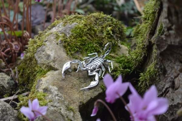 Sheerness Scorpion Orn3 - Emma Keating Jewellery__sm