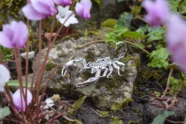 Sheerness Scorpion Orn5 - Emma Keating Jewellery__sm