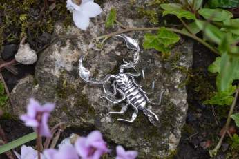 Sheerness Scorpion Orn6 - Emma Keating Jewellery__sm