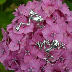 Tree Frogs Small 1 - Emma Keating Jewellery