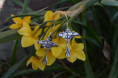 madagascan moon moth earrings - emma keating