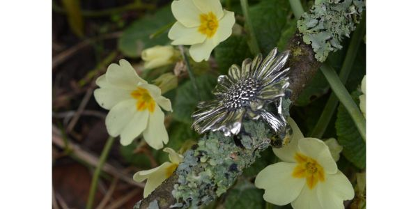Oxeye Daisy Ring in Sterling Silver by Emma Keating photographed side on