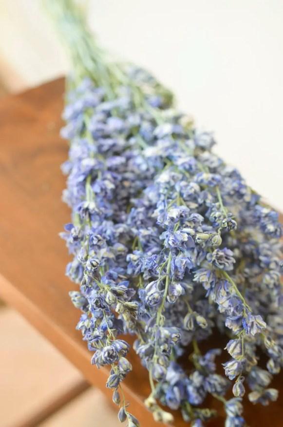 dried larkspur bouquet